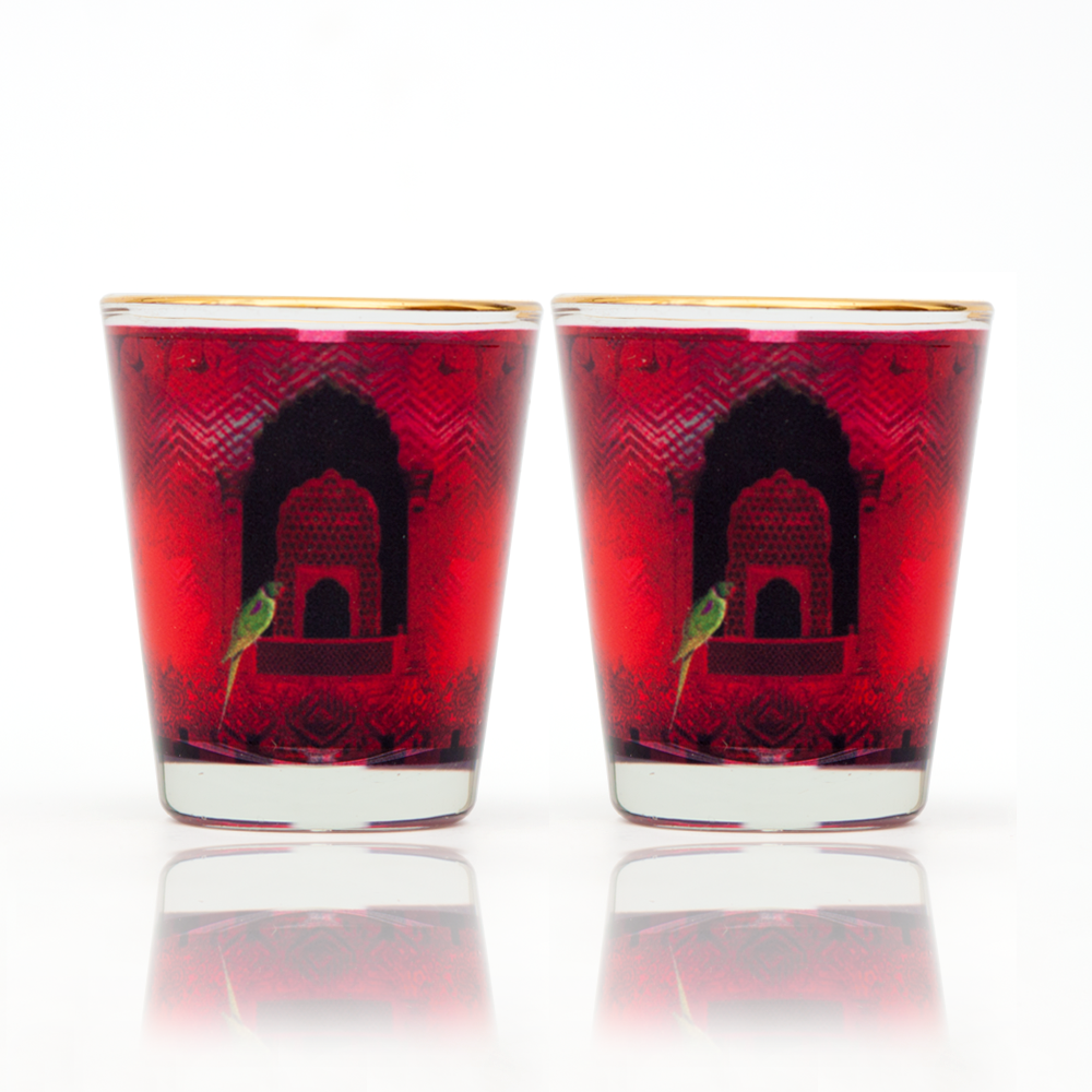 Parrot and Palace Shot Glass