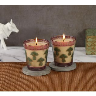 India Circus Pineapple Stem Green Candle Votive